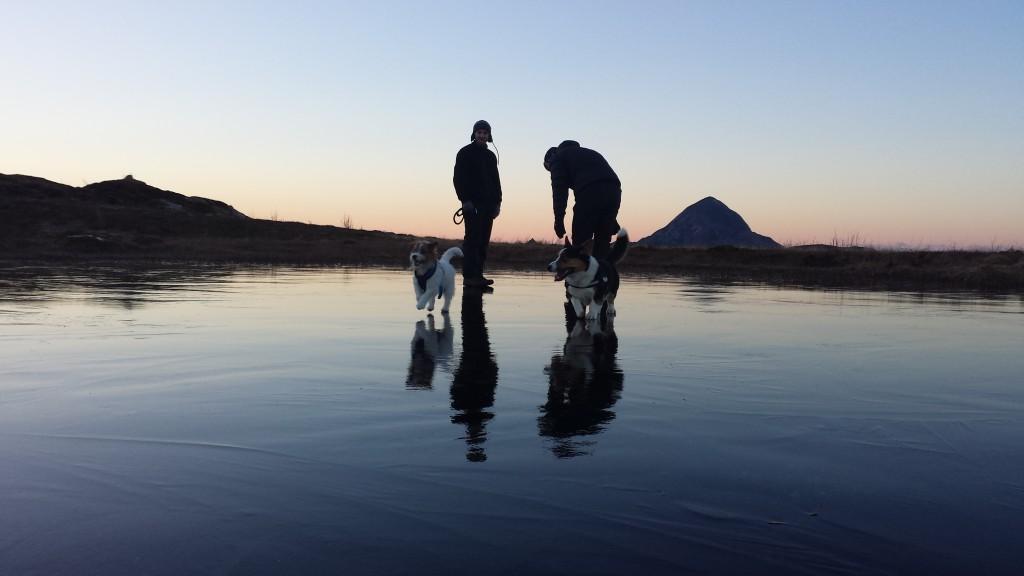 Hundene og eierne tester isen. Foto: TB