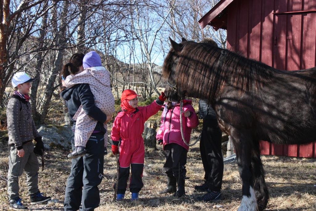 Hesten var også ute på tur.