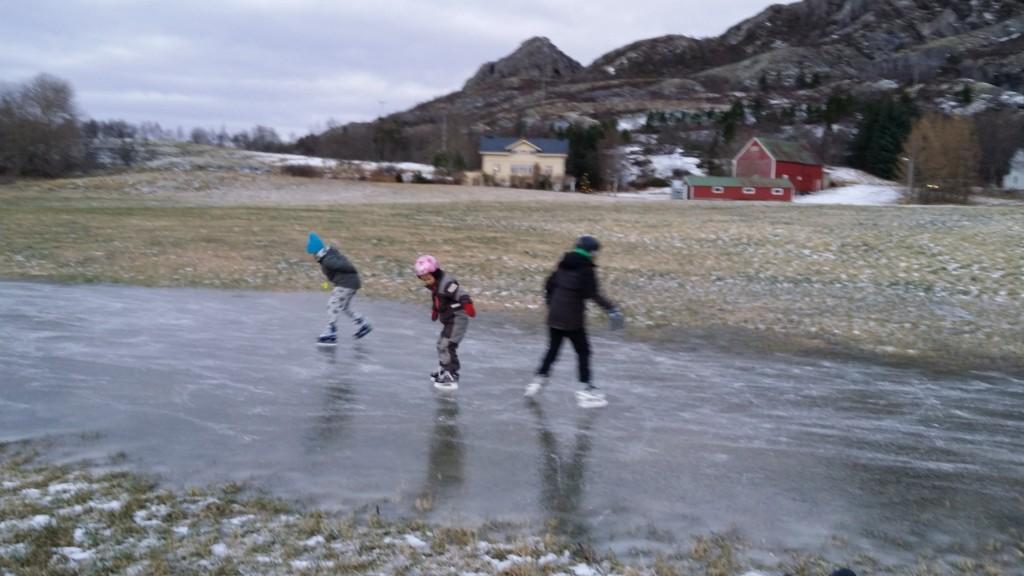 Det har også denne vinteren vært lite snø, og lite skøyteis.