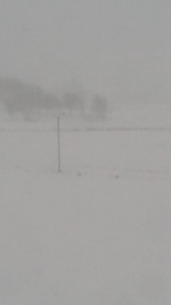 Men så kom snøstormen, og det har nesten lavet ned i noen dager nå.