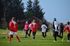 fotball meløya 148